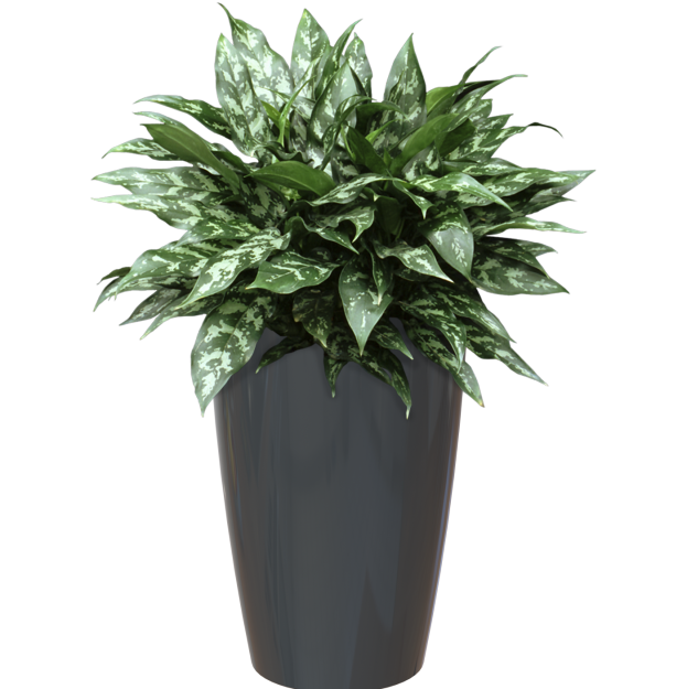 plastic-pot-recyclable-planter-tall-anthracite-plant